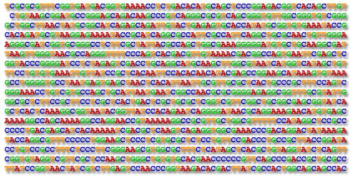 Art order product nimble diagnostics paternity for Personalized dna art